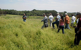 Members of the New England Small Ruminant Working Group walking in a field