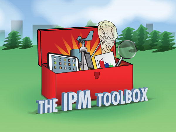 Illustration of an open toolbox in a field.