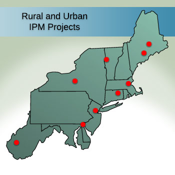 Rural and Urban IPM Projects
