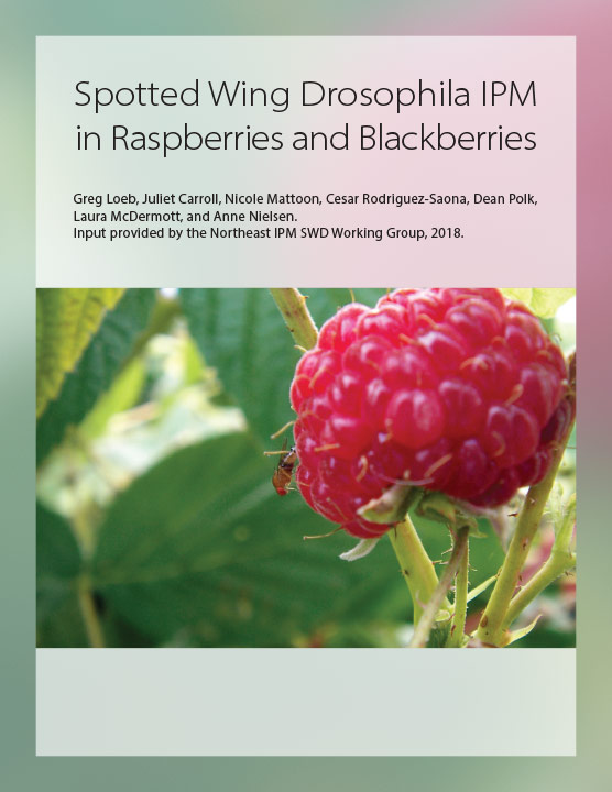 Spotted Wing Drosophila IPM in Raspberries and Blackberries