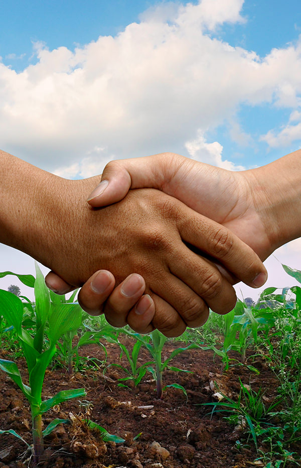 Handshake in front of a field