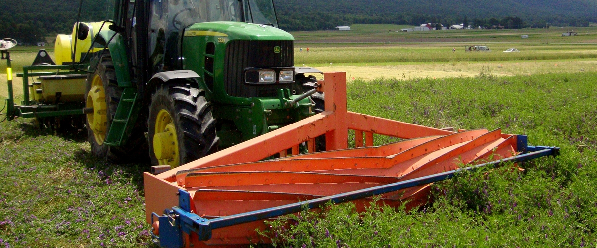 To optimize cover crops, get down in the weeds