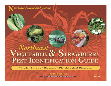 Wondrous Northeast Vegetable And Strawberry Pest Identification Guide Home Interior And Landscaping Eliaenasavecom