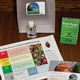 Stink Bug Identification Kits Are Available