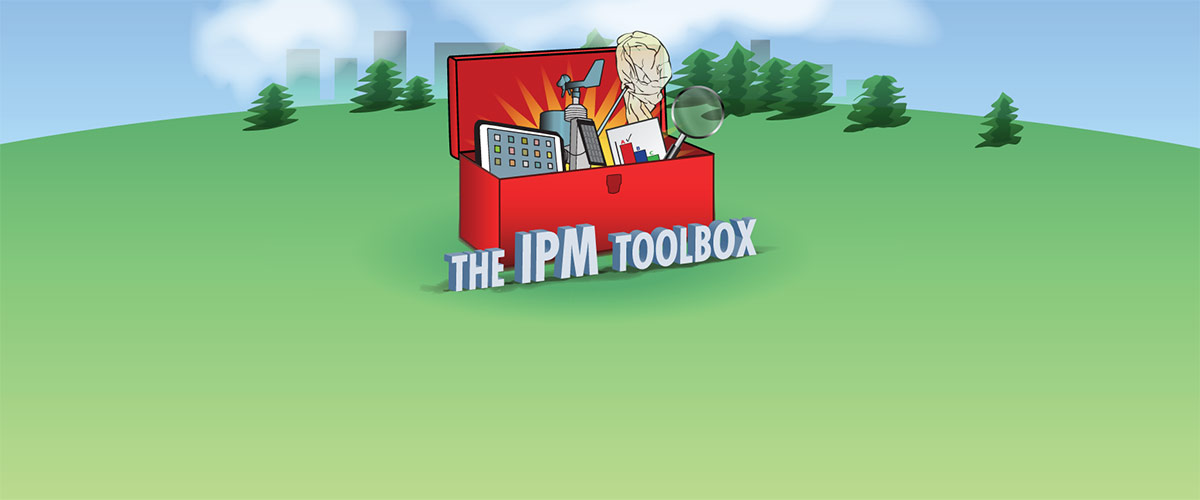 """The IPM Toolbox"" Webinar Series"